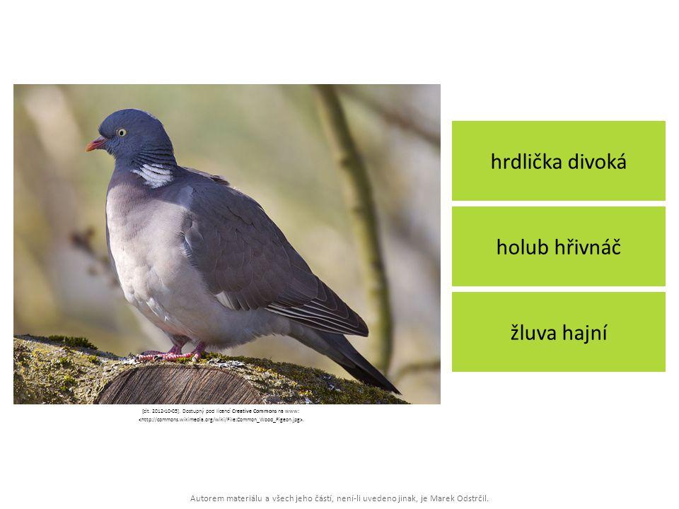 [cit. 2012-10-05]. Dostupný pod licencí Creative Commons na www: